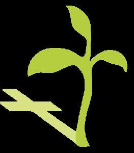 Logo evangelische gemeente krimpen boom